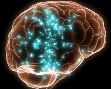 La lésion cérébral