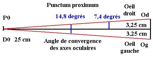 Punctum proximum