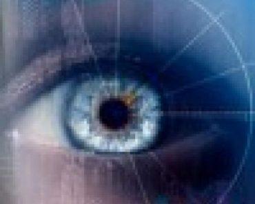 L'appareil visuel